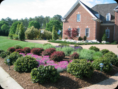 Permanent Color with Perennials & Shrubs