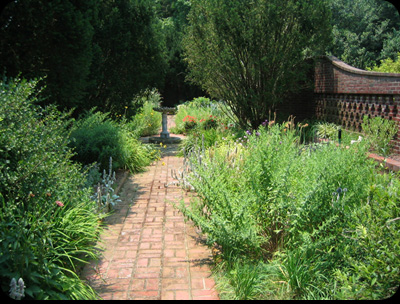 Perennial & Herb Gardens