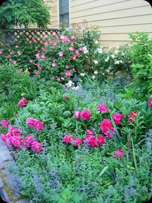 Bird & Butterfly Gardens