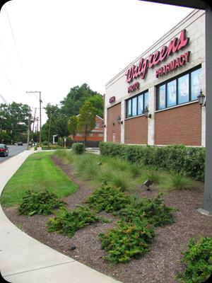 Retail Landscapes