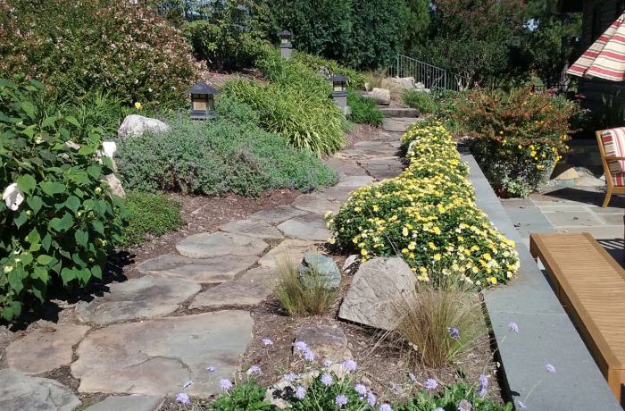 Informal Terrace & Garden Path