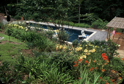 Perennials & Shrubs Blanket The Slopes