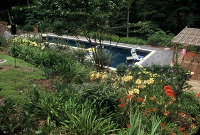 Perennials & Shrubs Blanket The Slopes