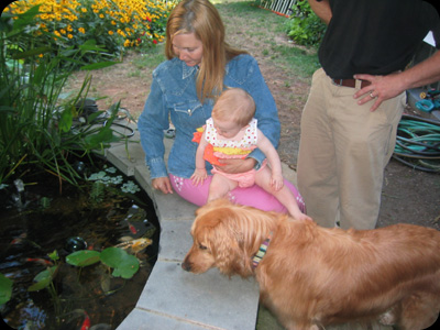 Kid & Pet Friendly Spaces