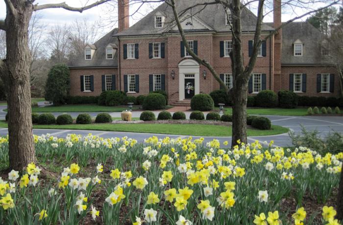 Early Spring Bulbs